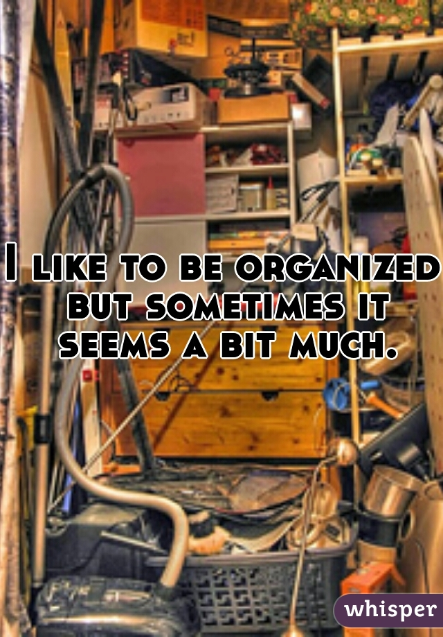 I like to be organized but sometimes it seems a bit much.