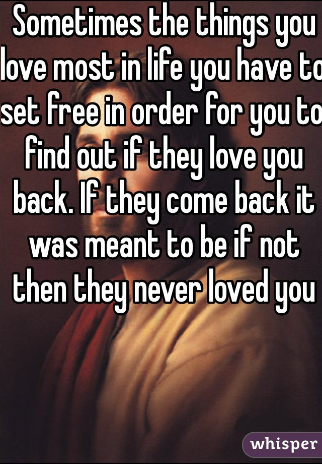 Sometimes the things you love most in life you have to set free in order for you to find out if they love you back. If they come back it was meant to be if not then they never loved you