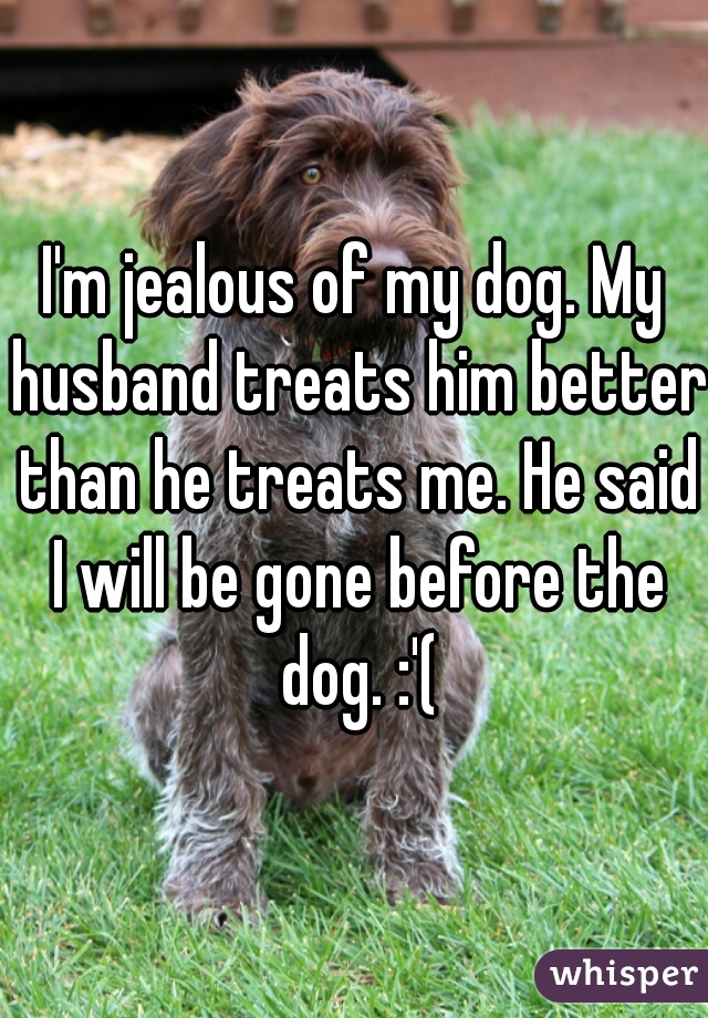 I'm jealous of my dog. My husband treats him better than he treats me. He said I will be gone before the dog. :'(