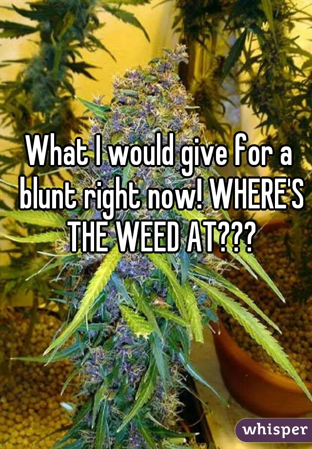 What I would give for a blunt right now! WHERE'S THE WEED AT???