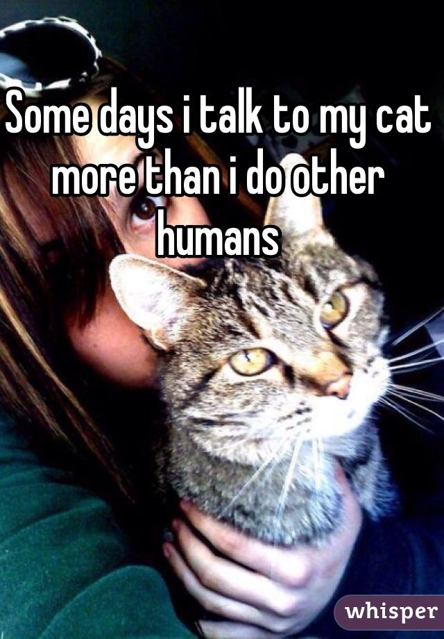 Some days i talk to my cat more than i do other humans