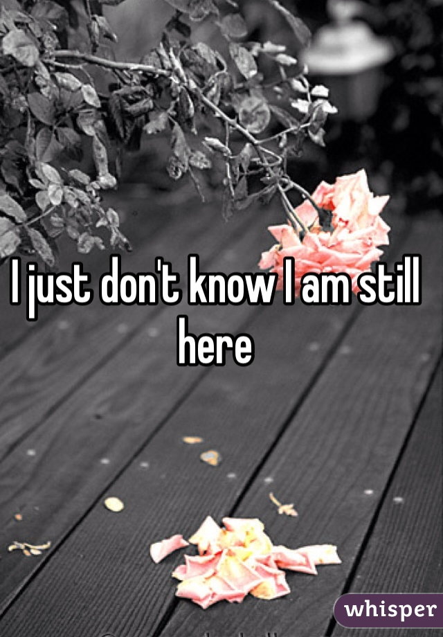 I just don't know I am still here
