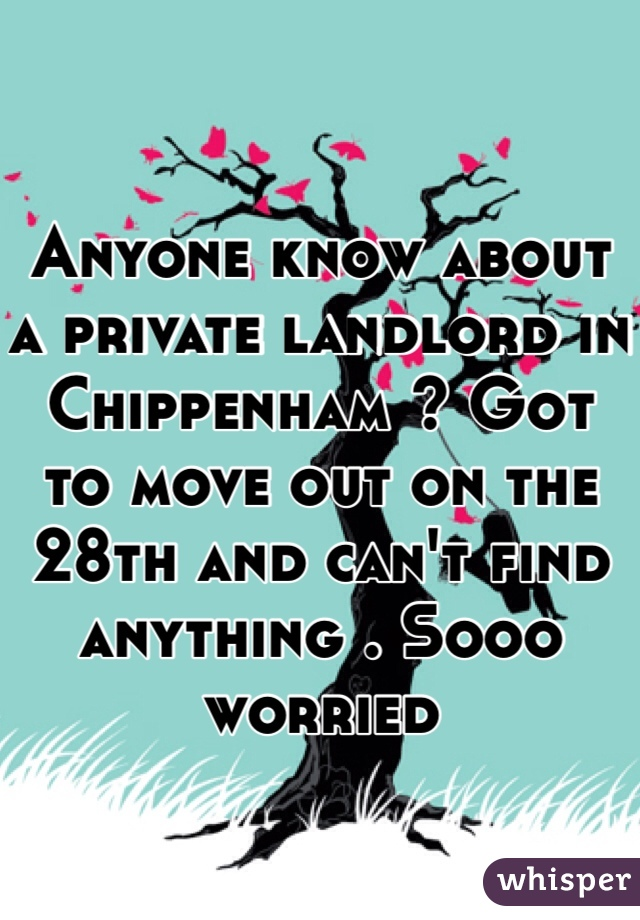 Anyone know about a private landlord in Chippenham ? Got to move out on the 28th and can't find anything . Sooo worried