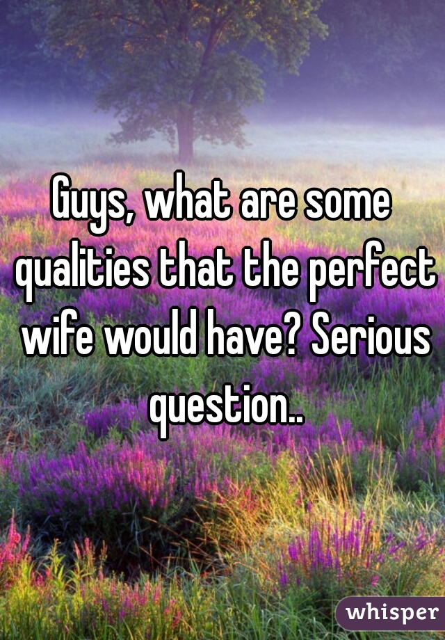 Guys, what are some qualities that the perfect wife would have? Serious question..