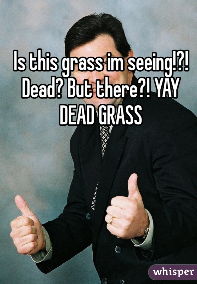 Is this grass im seeing!?! Dead? But there?! YAY DEAD GRASS