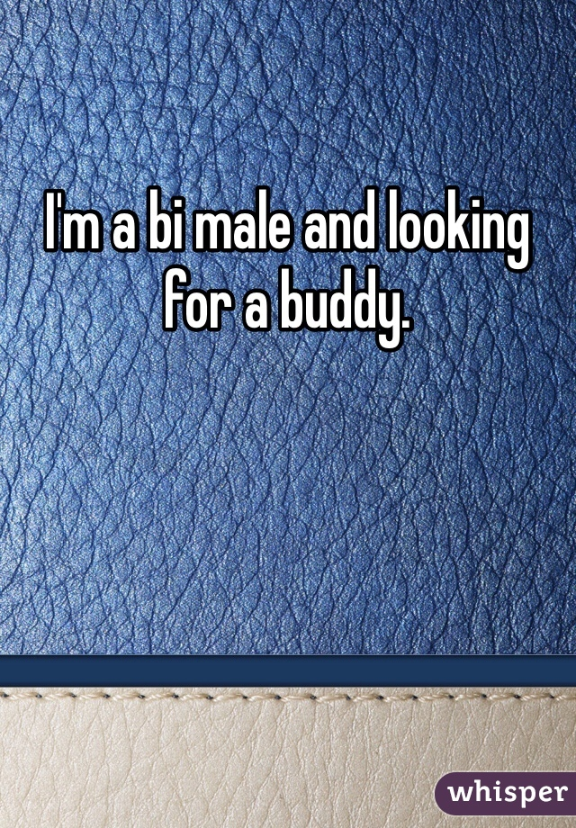 I'm a bi male and looking for a buddy.