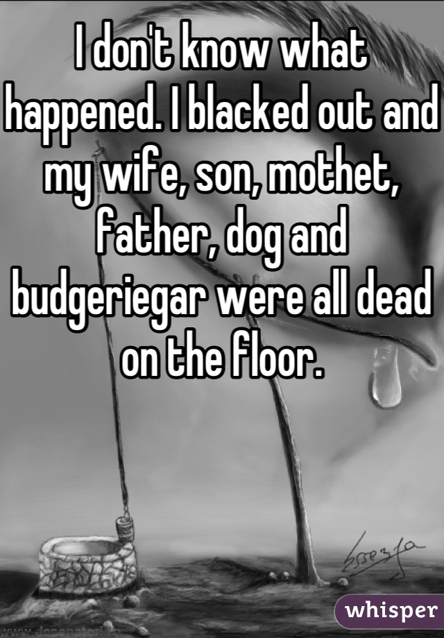 I don't know what happened. I blacked out and my wife, son, mothet, father, dog and budgeriegar were all dead on the floor.