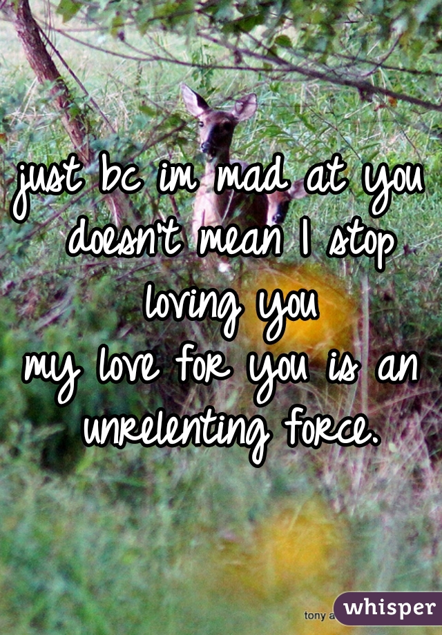 just bc im mad at you doesn't mean I stop loving you  my love for you is an unrelenting force.