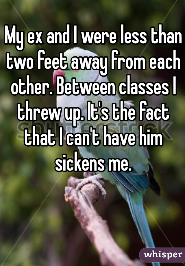 My ex and I were less than two feet away from each other. Between classes I threw up. It's the fact that I can't have him sickens me.