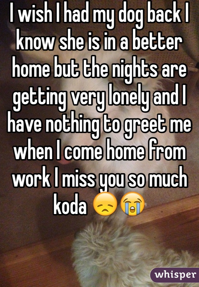 I wish I had my dog back I know she is in a better home but the nights are getting very lonely and I have nothing to greet me when I come home from work I miss you so much koda 😞😭