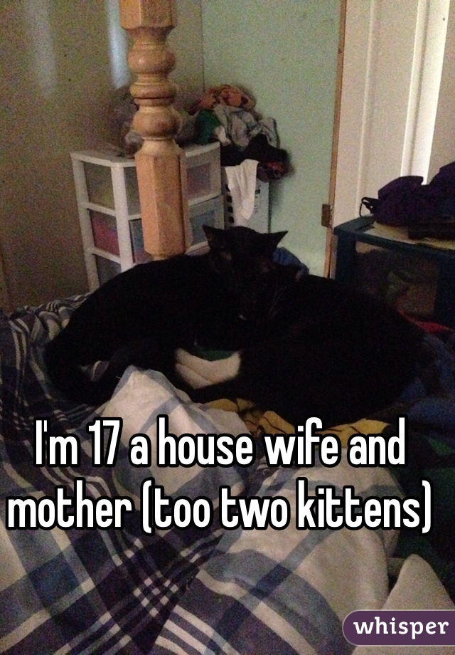 I'm 17 a house wife and mother (too two kittens)