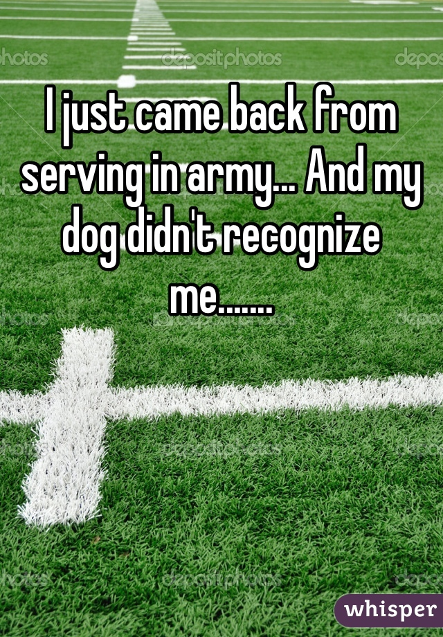 I just came back from serving in army... And my dog didn't recognize me.......