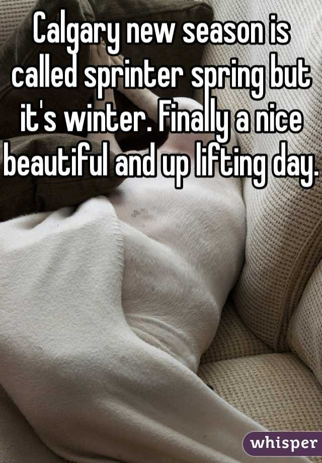 Calgary new season is called sprinter spring but it's winter. Finally a nice beautiful and up lifting day.