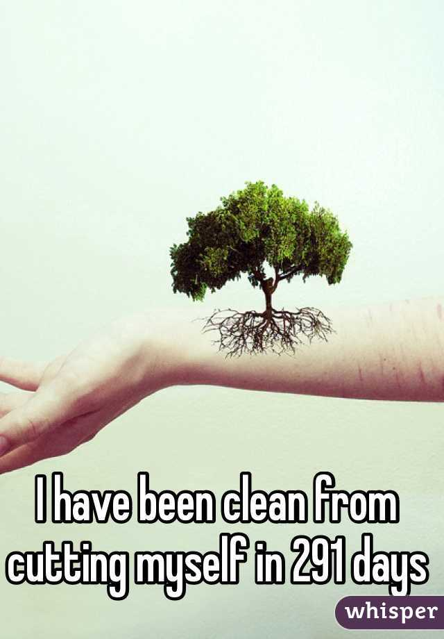 I have been clean from cutting myself in 291 days