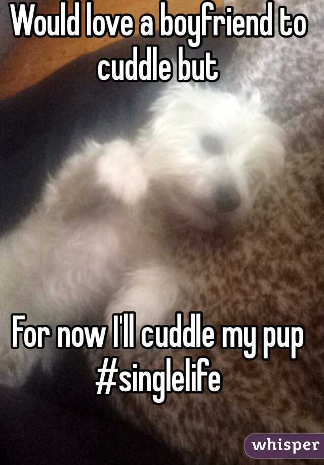 Would love a boyfriend to cuddle but      For now I'll cuddle my pup #singlelife