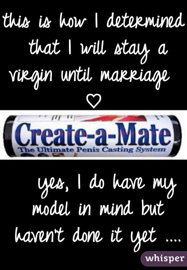 this is how I determined that I will stay a virgin until marriage           ♡                                                    yes, I do have my model in mind but haven't done it yet ....