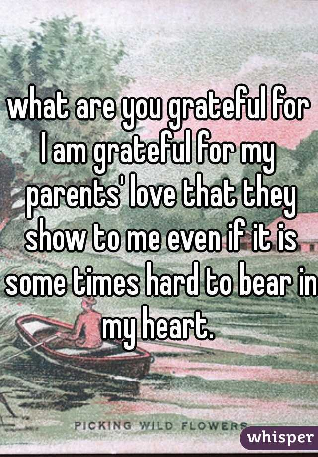 what are you grateful for? I am grateful for my parents' love that they show to me even if it is some times hard to bear in my heart.