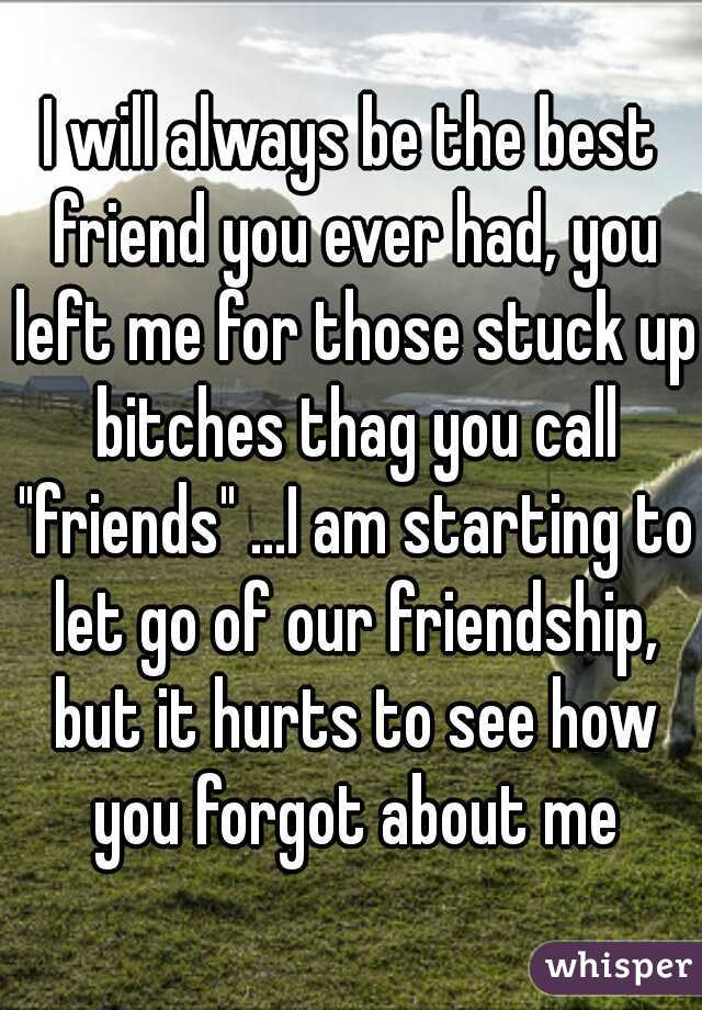 """I will always be the best friend you ever had, you left me for those stuck up bitches thag you call """"friends"""" ...I am starting to let go of our friendship, but it hurts to see how you forgot about me"""