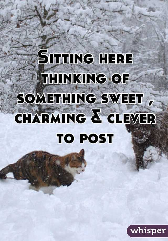 Sitting here thinking of something sweet , charming & clever to post