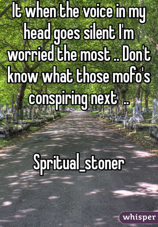 It when the voice in my head goes silent I'm worried the most .. Don't know what those mofo's conspiring next  ..    Spritual_stoner