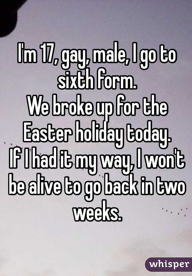 I'm 17, gay, male, I go to sixth form.  We broke up for the Easter holiday today.  If I had it my way, I won't be alive to go back in two weeks.