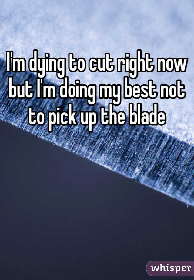 I'm dying to cut right now but I'm doing my best not to pick up the blade