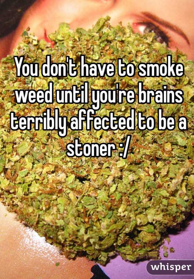 You don't have to smoke weed until you're brains terribly affected to be a stoner :/