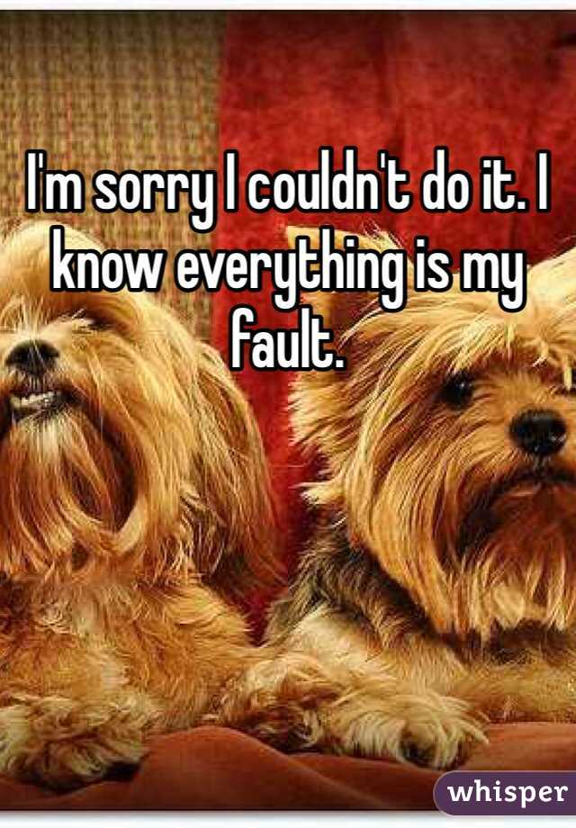 I'm sorry I couldn't do it. I know everything is my fault.