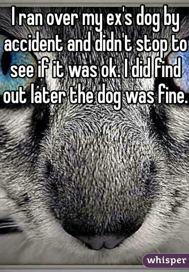 I ran over my ex's dog by accident and didn't stop to see if it was ok. I did find out later the dog was fine.