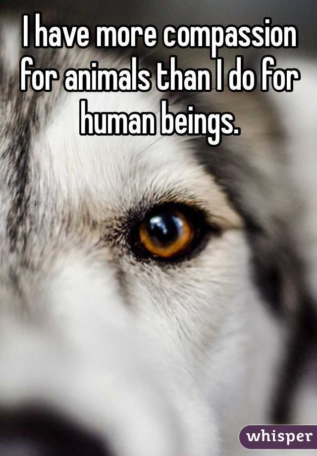 I have more compassion for animals than I do for human beings.