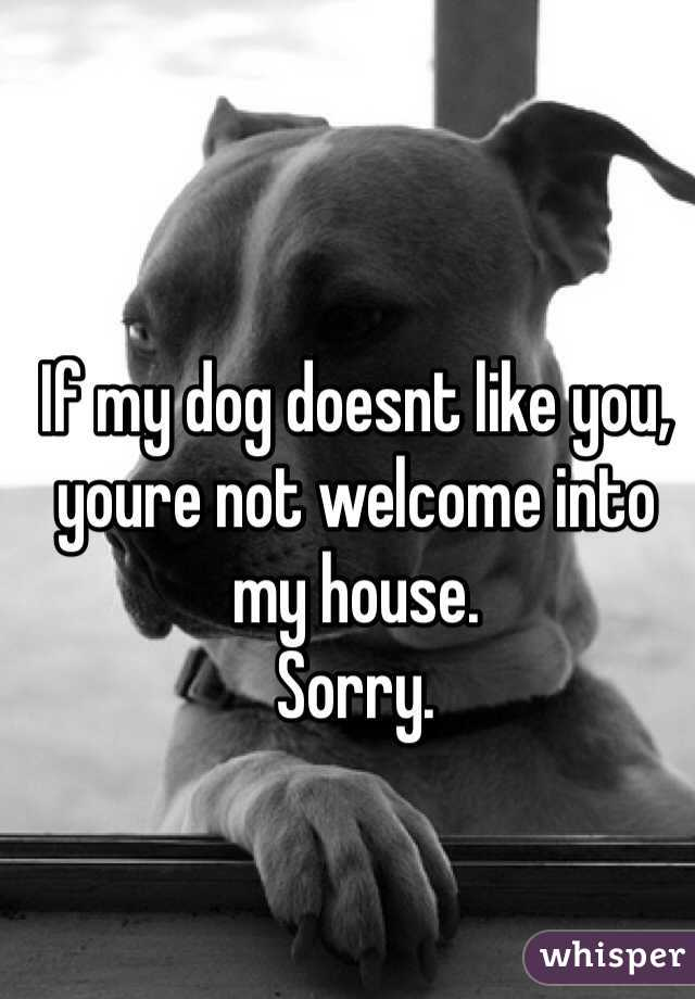 If my dog doesnt like you, youre not welcome into my house. Sorry.