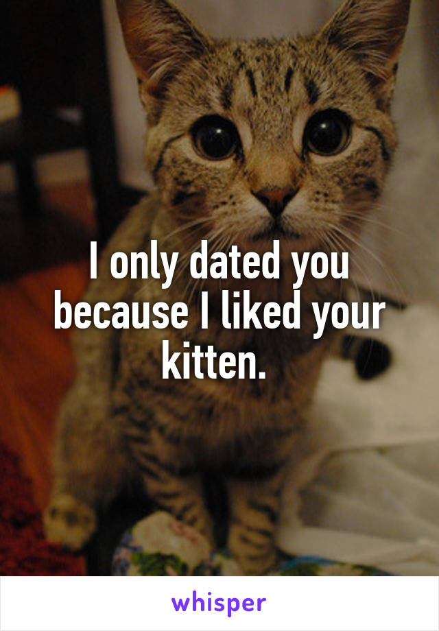 I only dated you because I liked your kitten.