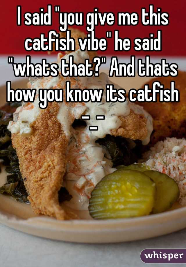 """I said """"you give me this catfish vibe"""" he said """"whats that?"""" And thats how you know its catfish -_-"""