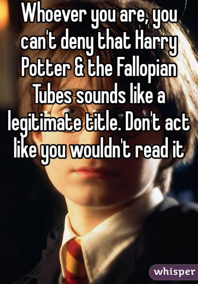 Whoever you are, you can't deny that Harry Potter & the Fallopian Tubes sounds like a legitimate title. Don't act like you wouldn't read it