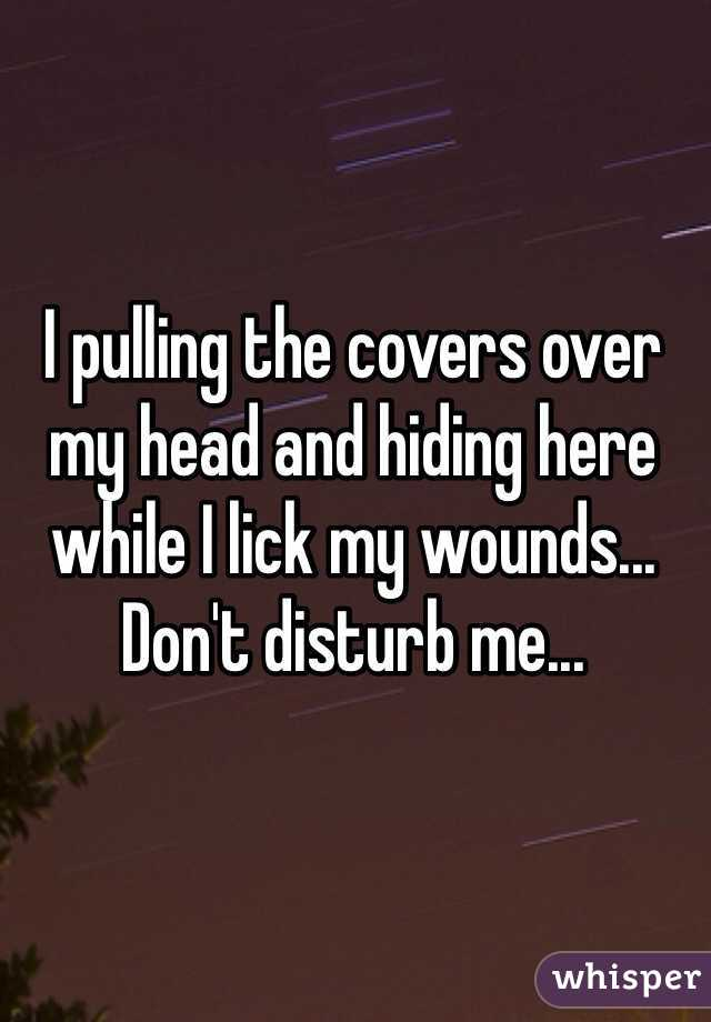 I pulling the covers over my head and hiding here while I lick my wounds...  Don't disturb me...