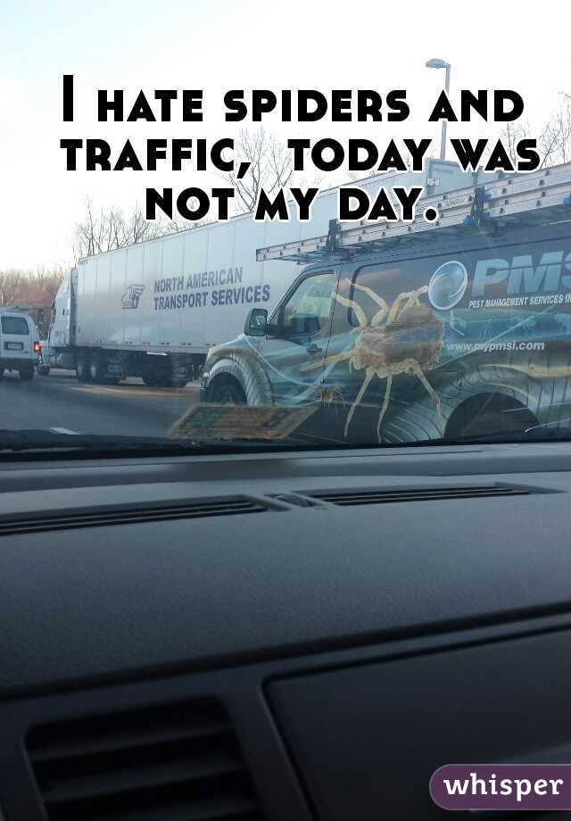 I hate spiders and traffic,  today was not my day.