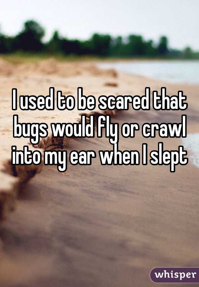 I used to be scared that bugs would fly or crawl into my ear when I slept