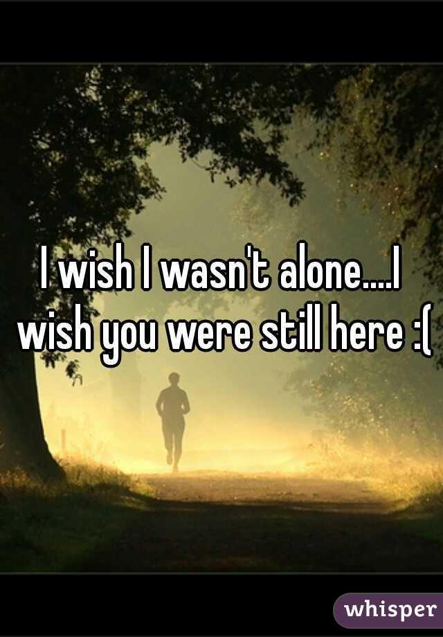 I wish I wasn't alone....I wish you were still here :(