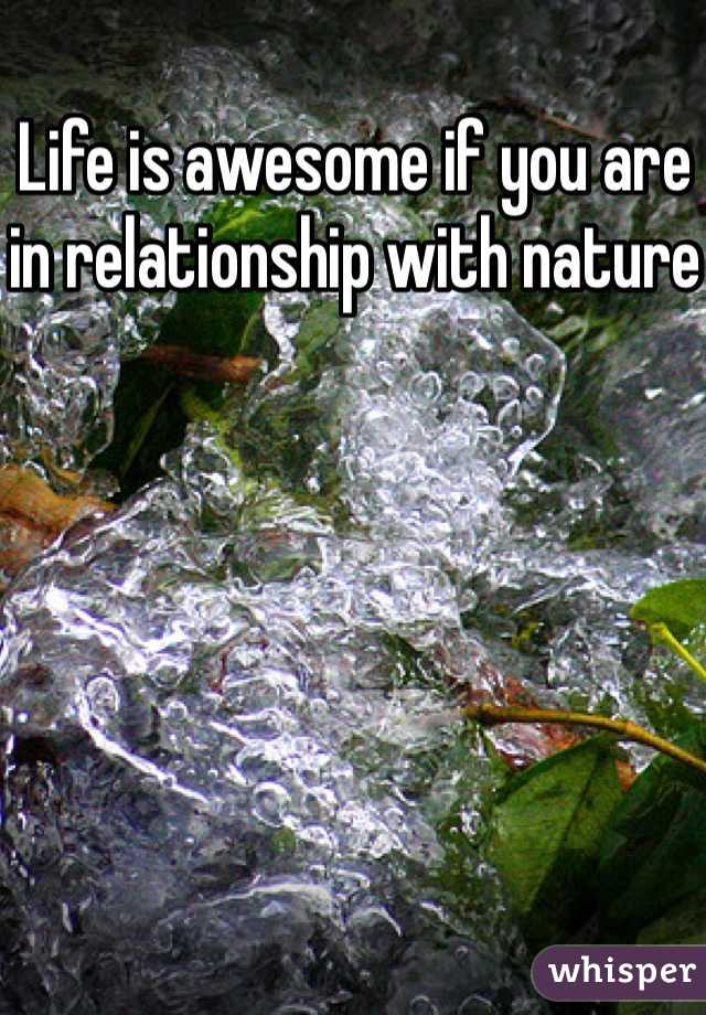 Life is awesome if you are in relationship with nature