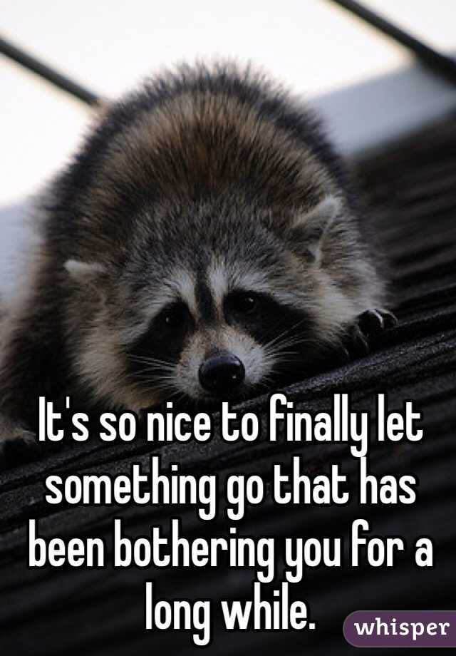 It's so nice to finally let something go that has been bothering you for a long while.
