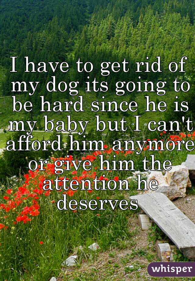 I have to get rid of my dog its going to be hard since he is my baby but I can't afford him anymore or give him the attention he deserves