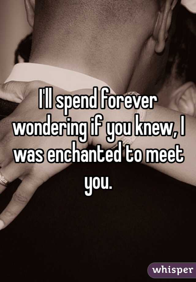 I'll spend forever wondering if you knew, I was enchanted to meet you.