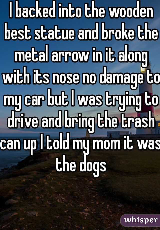 I backed into the wooden best statue and broke the metal arrow in it along with its nose no damage to my car but I was trying to drive and bring the trash can up I told my mom it was the dogs