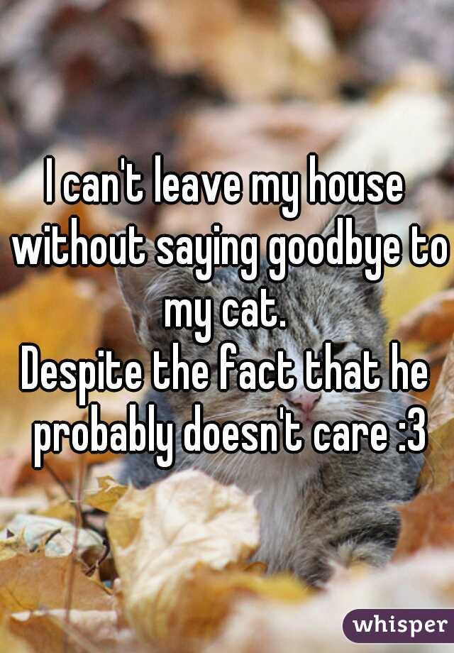 I can't leave my house without saying goodbye to my cat.  Despite the fact that he probably doesn't care :3