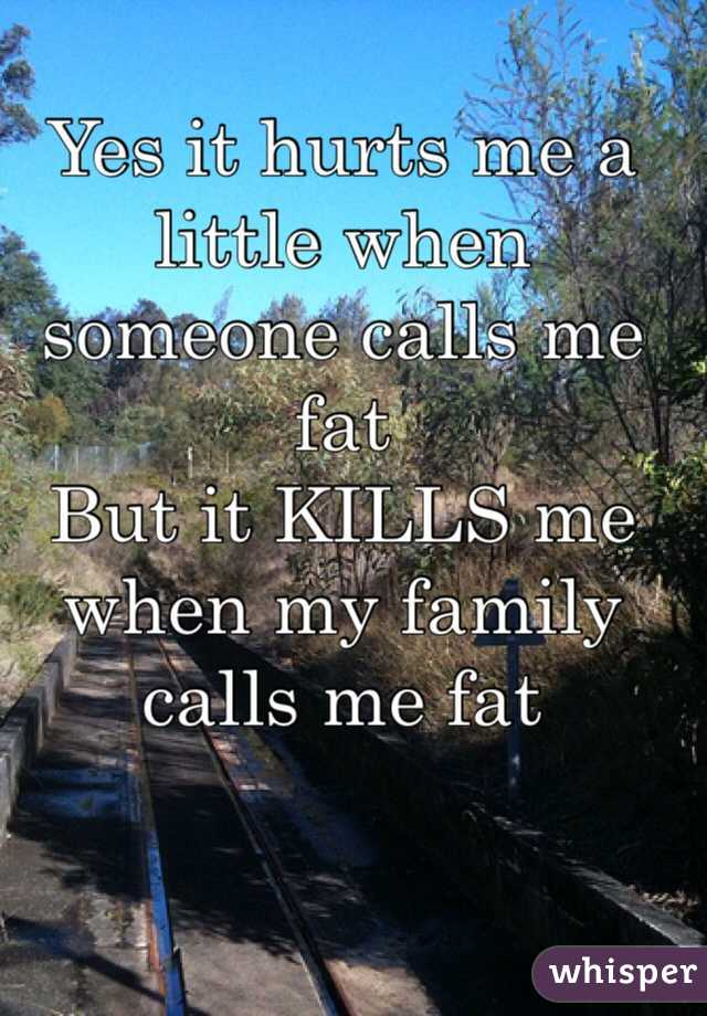Yes it hurts me a little when someone calls me fat But it KILLS me when my family calls me fat