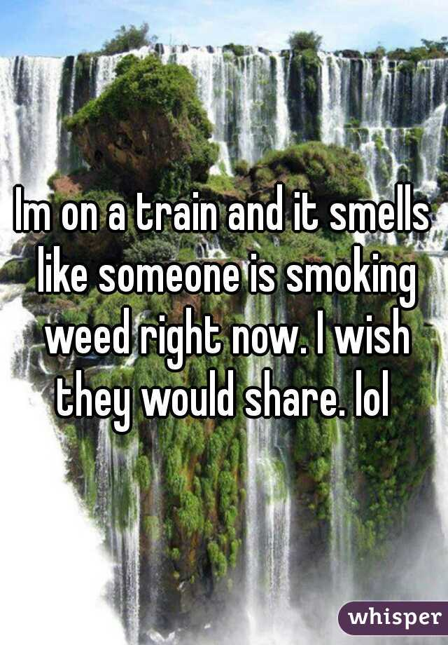 Im on a train and it smells like someone is smoking weed right now. I wish they would share. lol
