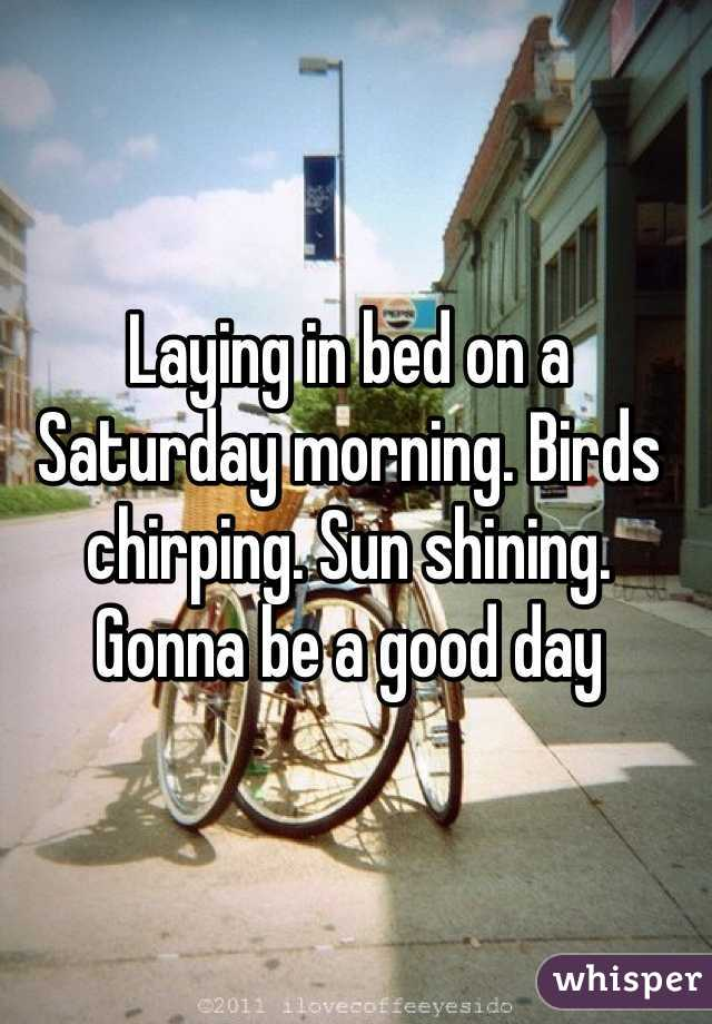 Laying in bed on a Saturday morning. Birds chirping. Sun shining. Gonna be a good day