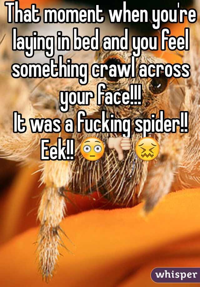 That moment when you're laying in bed and you feel something crawl across your face!!!  It was a fucking spider!! Eek!! 😳👎😖