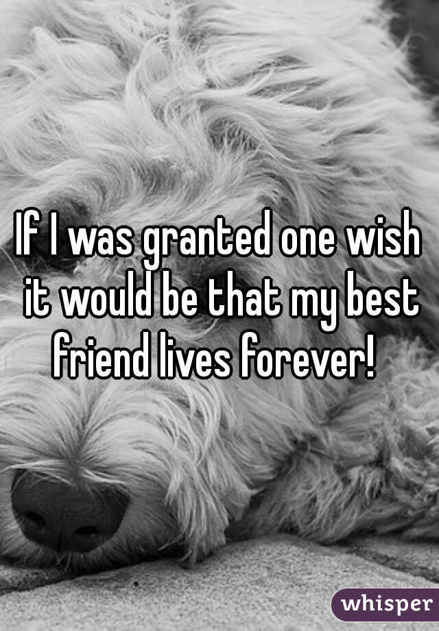 If I was granted one wish it would be that my best friend lives forever!