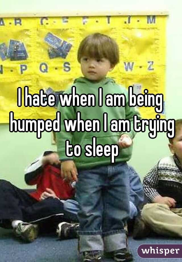 I hate when I am being humped when I am trying to sleep